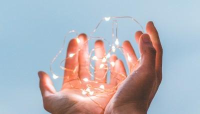 Branding Insights- Guardianship